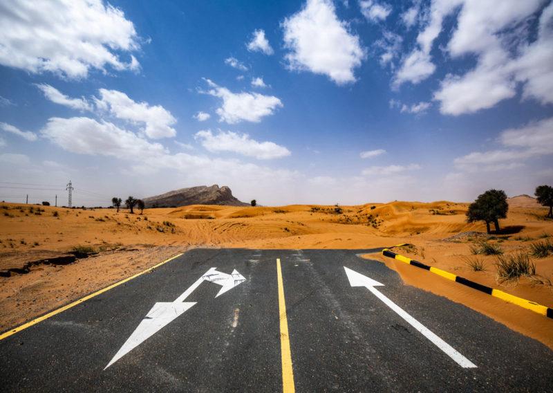 Meliha desert in Sharjah with wild goats roaming freely on the terrain.