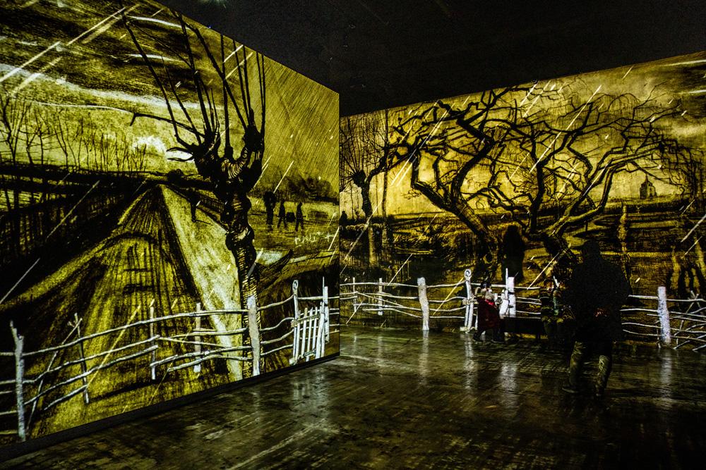 BUNKER DE LUMIERES – ART & MUSIC ON JEJU ISLAND 📸🇰🇷, Shea Winter Roggio