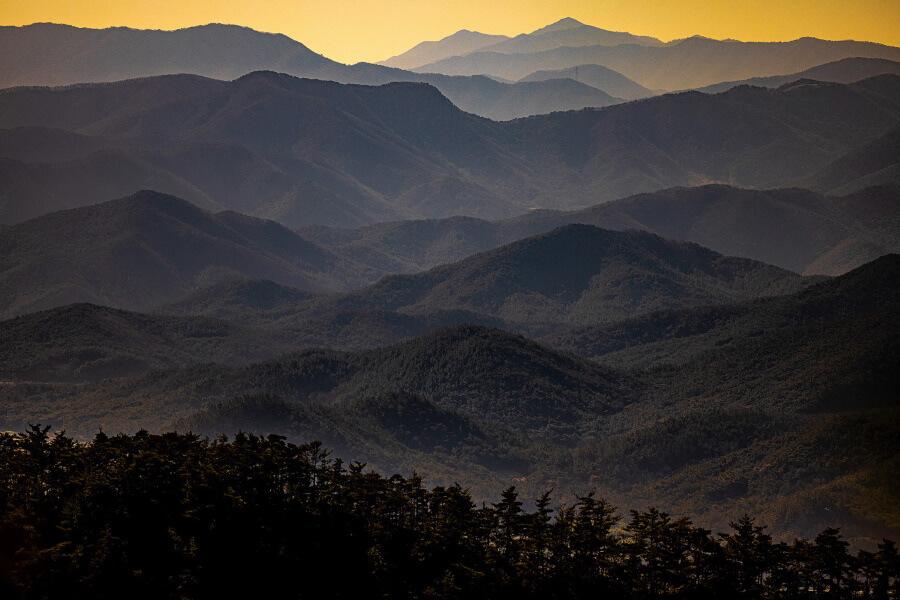 Nature South Korea Travel Photography