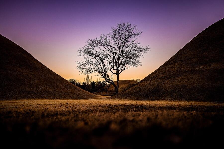 Gyeongju Nature Sunset South Korea Travel Photography