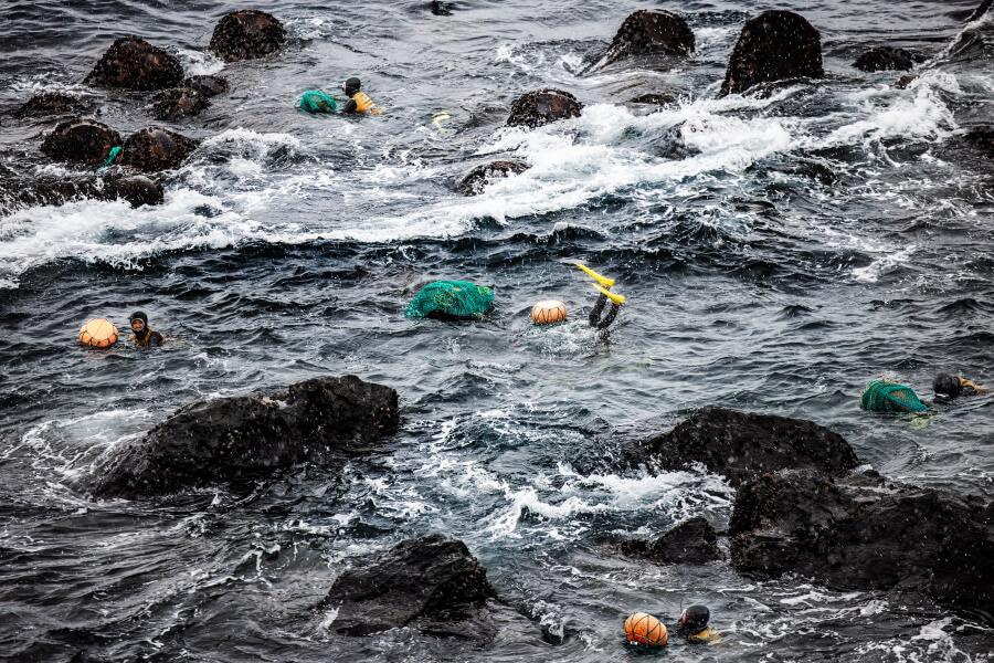 Female Divers Jeju Island