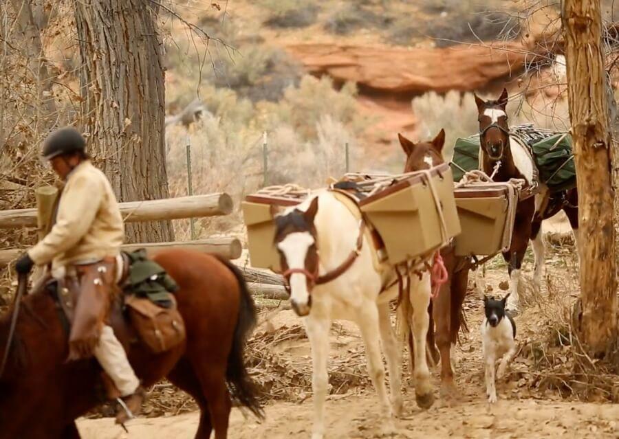 The Nature conservancy Escalante River horses